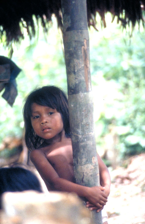 A little Amazonian girl