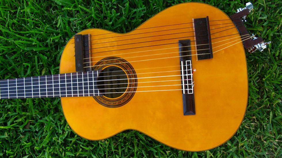 Nylon String Harp guitar top